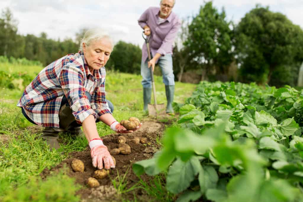 gardening tools for seniors
